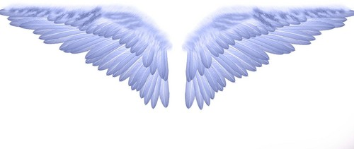wings-from-heaven--large-prf-1163321208