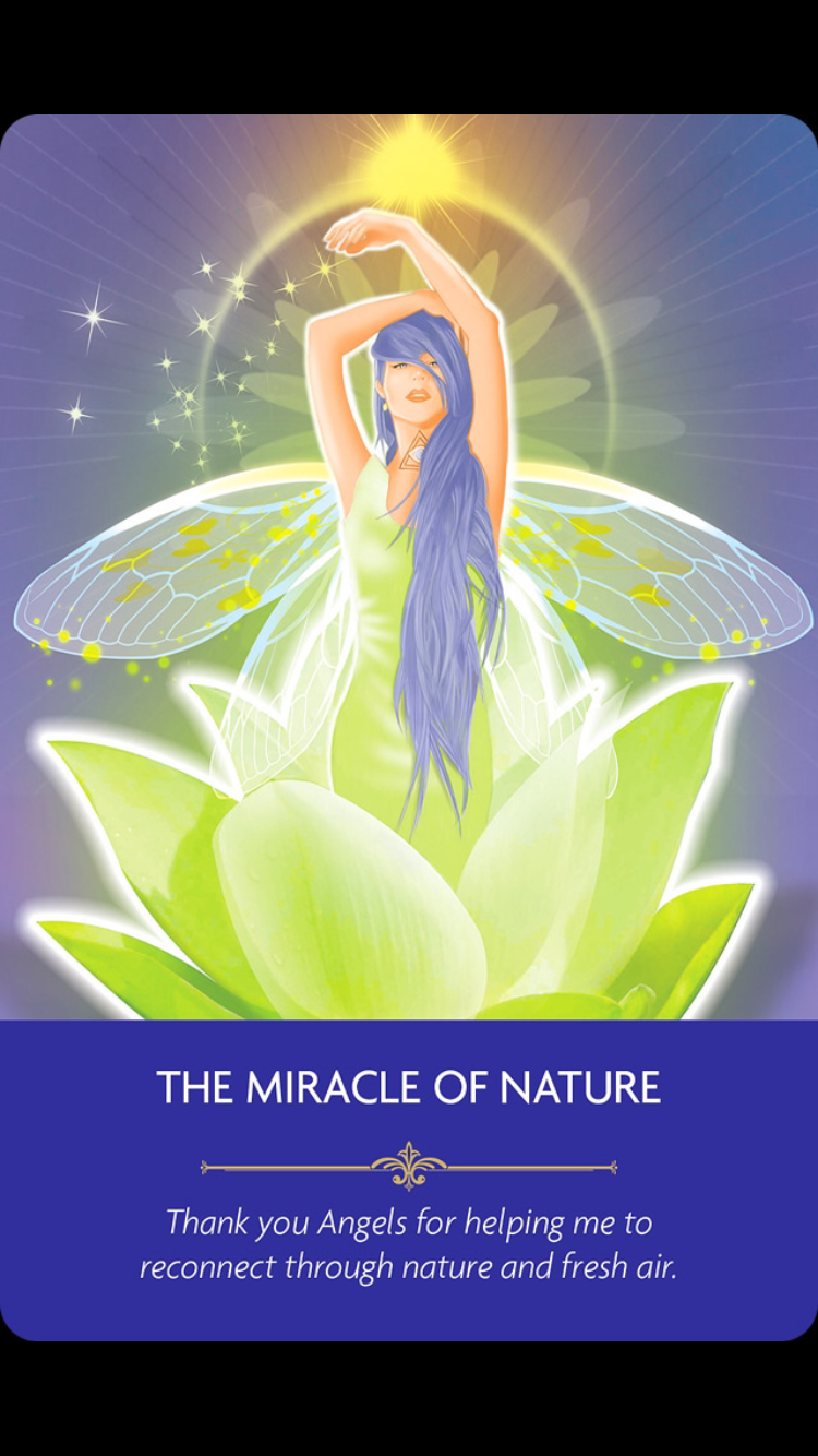 Weekly Angel Card Reading For October 27 Through November: Weekly Angel Messages For June 20th To 26th 2016